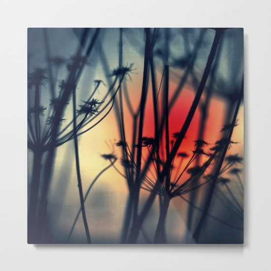 Shapes - dry weeds at sunrise Metal Print