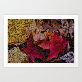 Fallen Leafs Art Print