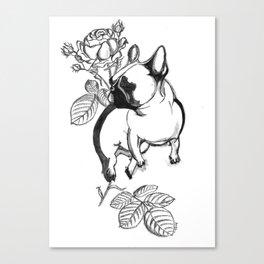 Rosie dog Canvas Print