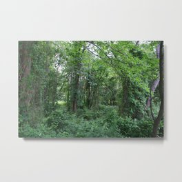 Two Roads Diverged in a Yellow Wood Metal Print