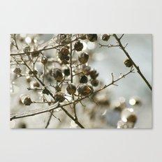 Winter's Silver Jewel Canvas Print