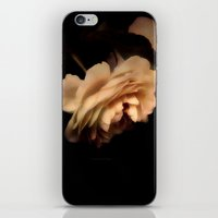 rose iPhone & iPod Skins featuring Rose by Christine Belanger
