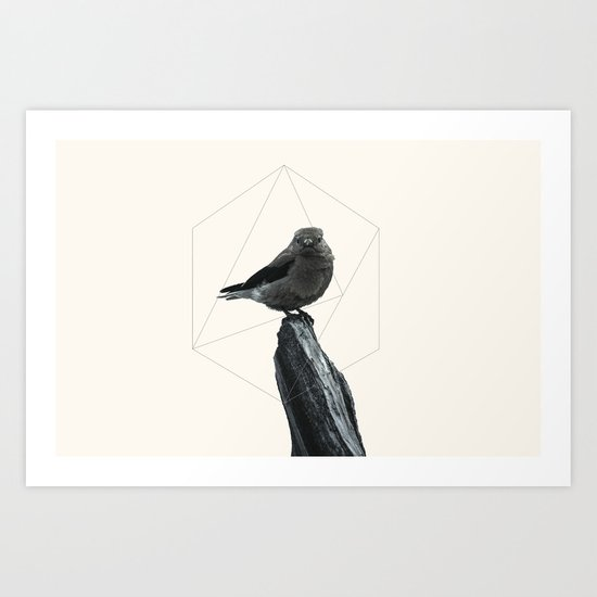 Geometrical Bird Art Print
