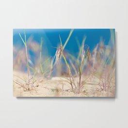 Macro of grass Metal Print