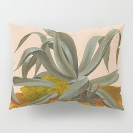 Vintage Agave Painting, 1820 Pillow Sham