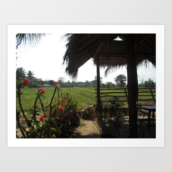 Rice Field Art Print