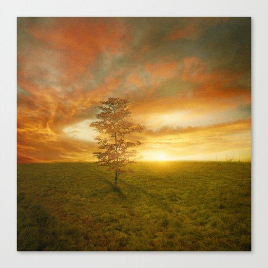 Sunset I C. VII Canvas Print
