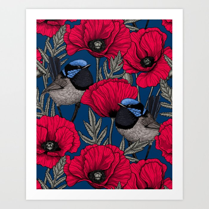 Fairy wren and poppies Kunstdrucke