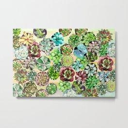 Succulents,Desert vibes Metal Print
