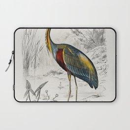 Purple heron (Ardea purpurea) illustrated by Charles Dessalines D Orbigny (1806-1876) Laptop Sleeve