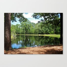 A Swimming Hole Canvas Print
