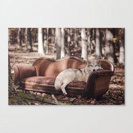 Nap in the Woods Canvas Print