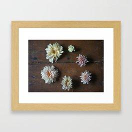 The Circle of Life Framed Art Print