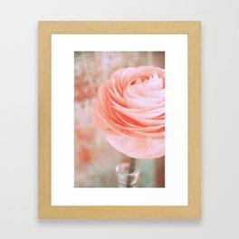rosa monday Framed Art Print