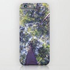 woodland 3437 Slim Case iPhone 6s
