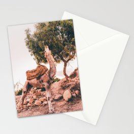 Camel Pose Stationery Cards