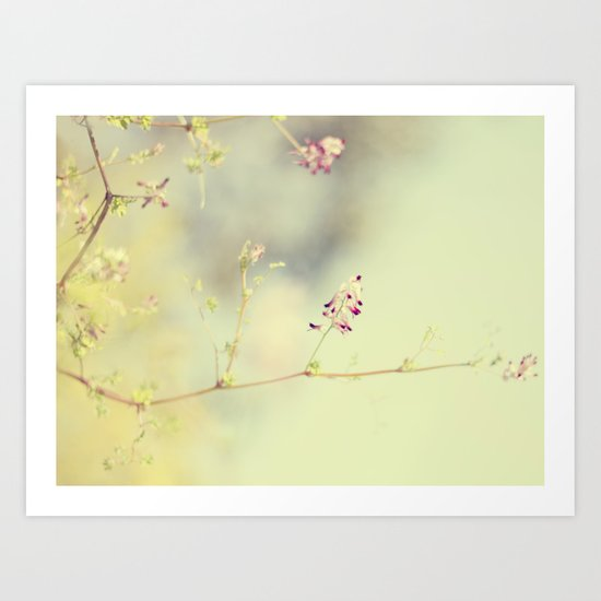 soft scent of spring Art Print