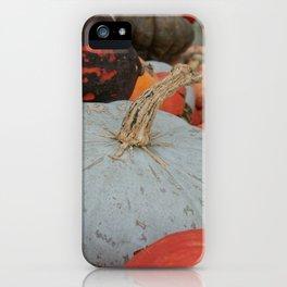 sublime squash iPhone Case