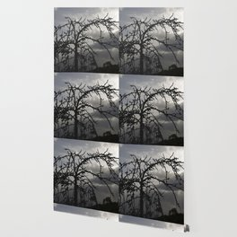 Deadly tree silhouette on cloudy background Wallpaper