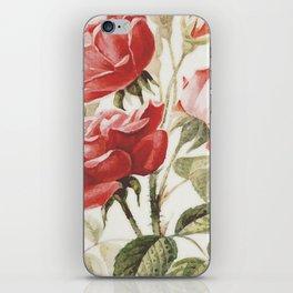 Vintage Botanical No. 4 iPhone Skin