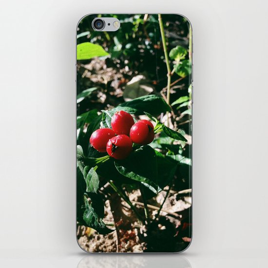 Spider Fruit iPhone & iPod Skin