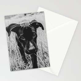 Doggy in the Field // B&W Hiking by Rustic Abandoned Log Cabin Summit Colorado Stationery Cards