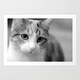 Cari - Black and White Art Print