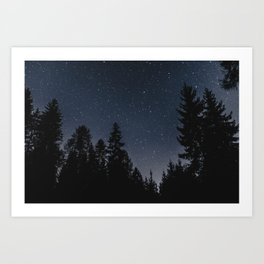 Star Night in the Woods | Nature and Landscape Photography Art Print