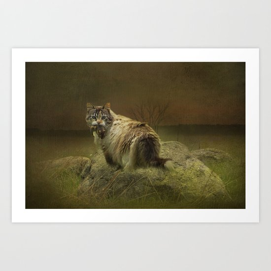 A Game of Cat and Mouse Art Print