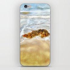 WASHED AWAY TO THE SEA iPhone & iPod Skin