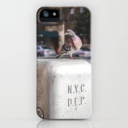 NYC Pigeon iPhone Case