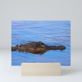 Gator Daze Mini Art Print