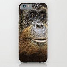 Orangutan Portrait iPhone 6s Slim Case