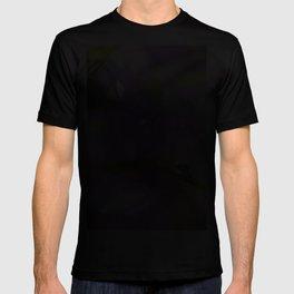 Natural raindrops slide in the spring Garden T-shirt