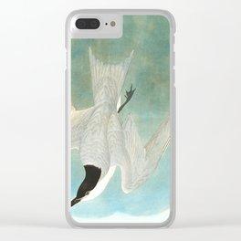 Marsh Tern Clear iPhone Case