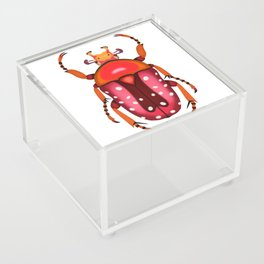 Orange and Red Beetle Acrylic Box