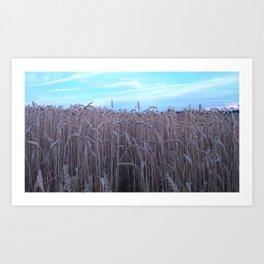 Wheat Fields Catcher in the rye Art Print