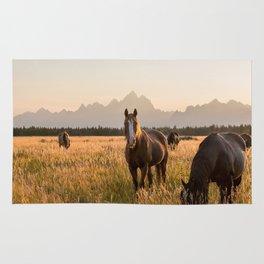 Horses Grazing Below the Tetons Rug