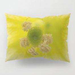 Center of a White Petunia Pillow Sham