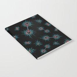 Mitosis Notebook