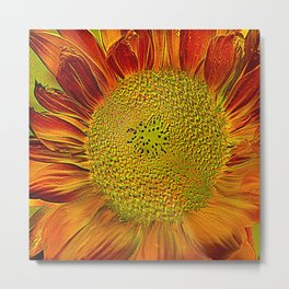 flower of sun (This Art work is in collaboration with the great artist designer Joe Ganech) Metal Print