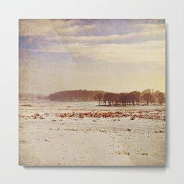 Snowy Landscape. Metal Print