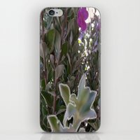 plant iPhone & iPod Skins featuring Plant by ANoelleJay