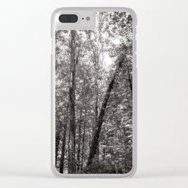 A forest of dreams Clear iPhone Case
