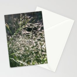 Grasses in the morning bokeh Stationery Cards