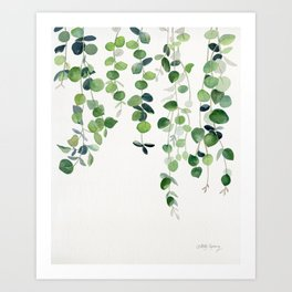 Eucalyptus Watercolor 2  Art Print