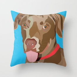 Zeno Throw Pillow