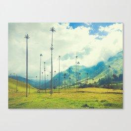 Wax Palms of Salento, Colombia Fine Art Print Canvas Print