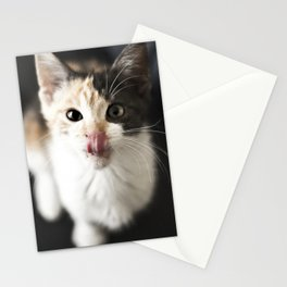 Kitty Noms Stationery Cards