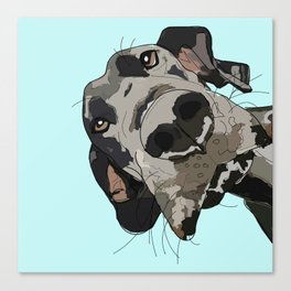 Great Dane In Your Face Canvas Print